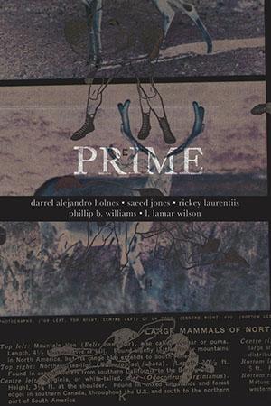 Prime book cover